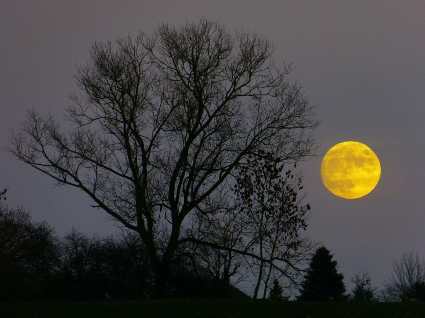 moon-229889_1920